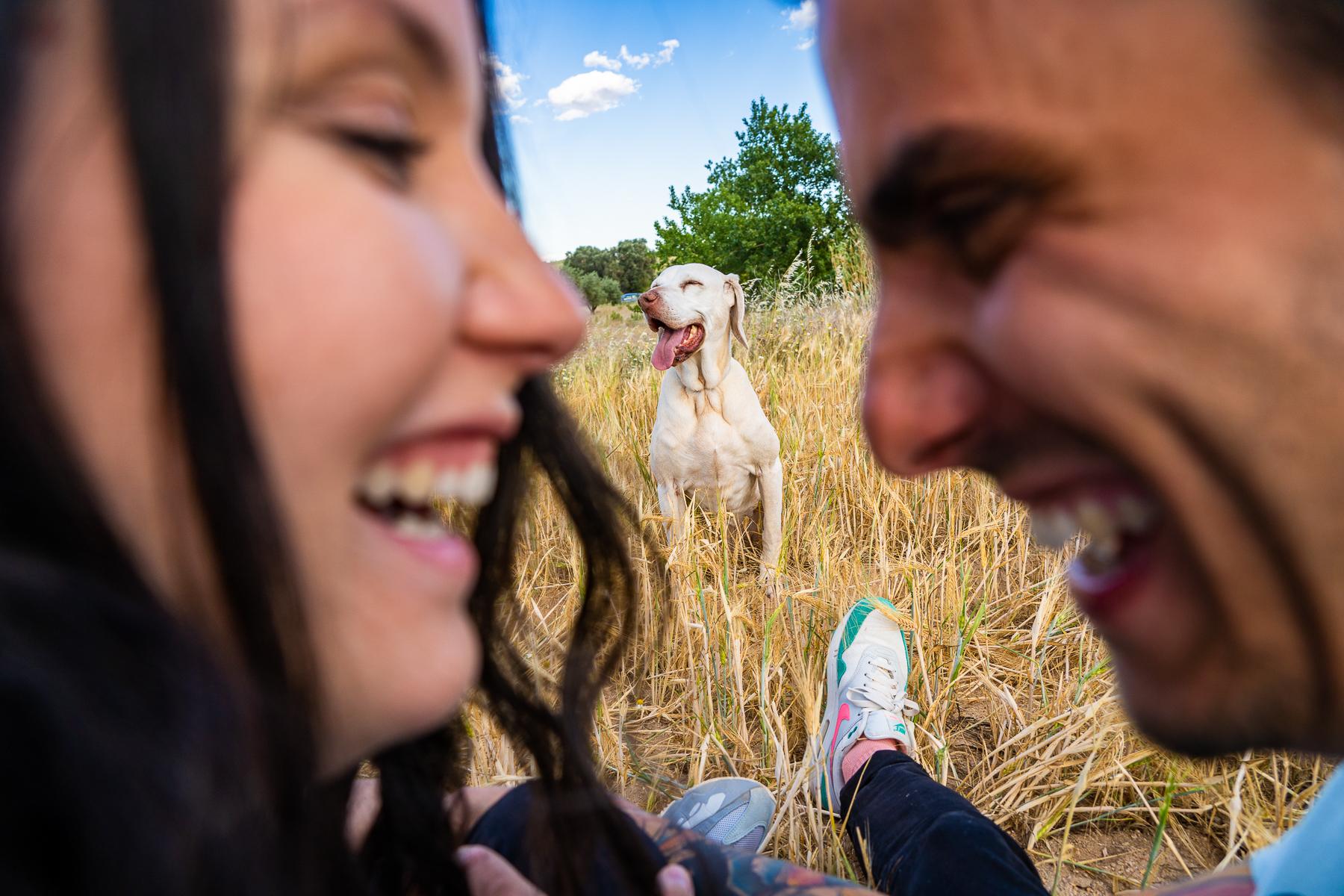 sesión de fotos de familia con perro
